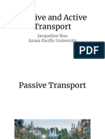 passive and active transport-2