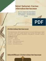 136709_Enterobacteriae D3-2B.pptx