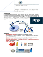 6P-ADN-2019.doc