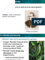 6.3 Mendel heredity  PPT.ppt