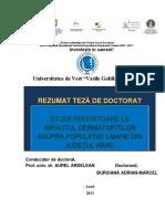 REZUMAT_TEZA