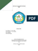 SAP DBD DHF REVISI