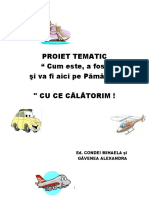 PROIECT TEMATIC color