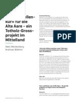 Werdenberg, Widmer (2018)_Totholz für die Alte Aare