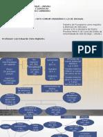 Fluxograma Penal - ordinário.pptx