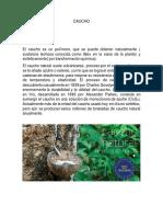 CAUCHO.pdf