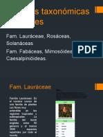Familias taxonómicas vegetales