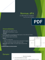 Normas APAv2