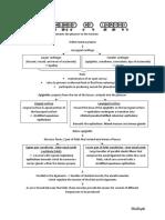 Histology of Larynx
