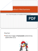 335501944-13-1-feedback-mechanisms-pptx