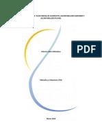 informe_consolidado_disenos_agua_y_alcantarillado word