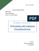 Ensayo Control Constitucional según la Constitución de la República Bolivariana de Venezuela