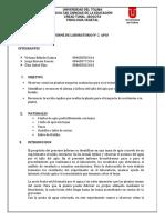 INFORME DE LABORORATORIO APIO