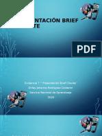 presentación brief cliente.pptx