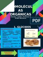 BIOMOLECULAS ORGANICAS 5TO