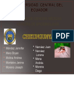 chikungunyacompleto-150710031917-lva1-app6892.pptx