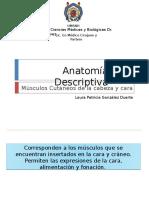 Anatomía Descriptiva Músculos de la Mímica.pptx