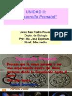 PPT 7° -Desarrollo Prenatal I parte- 2017 LM.ppt