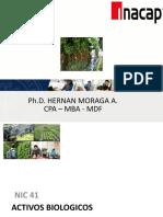 NIC 41 -  ACTIVOS BIOLOGICOS - INACAP 2020