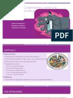 Análisis de la Legislación contra la Violencia Domestica-1.pptx