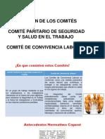 Conformacion-Comites