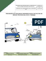 CTM.DHSEQ.03. PVE FACTOR DE RIESGO PSICOSOCIAL EN EL TRABAJO.docx