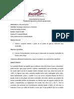 Informe Caramelo Blando Daniel Gordillo.pdf