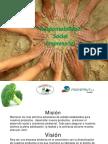 RSE y Sector Público - AZeller
