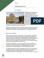 petro sedimentaria unidad 1.pdf