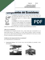 CUARTO_CIENCIAS_1.doc