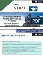 Gestion del cuidado en persona con patologia prostática