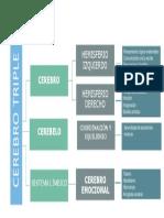 CEREBRO TRIPLE MAPA.pdf
