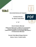 Atribuciones Municipales.docx