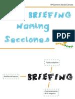 NUEVO Briefing Naming Seccionesbaja