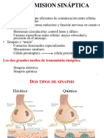 SINAPSIS  I 2012.pdf