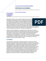EFICIENCIA ECONOMICA