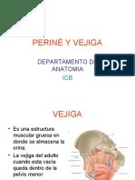 EL PERINÈ