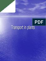 pengangkutan air, mineral dan asimilat.pdf