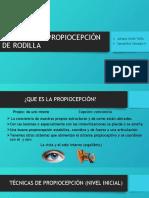 PROPIOCEPCIÓN DE RODILLA
