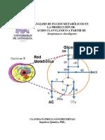 Analisis de Flujos metabolicos en la produccion de acido clavulanico .pdf