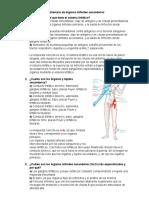 Cuestionario de órganos linfoides secundarios