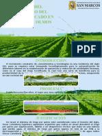Impacto Del Desarrollo Del Riego Tecnificado en La Región de Olmos