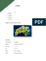 Jenis-jenis Mineral Radioaktif.pdf