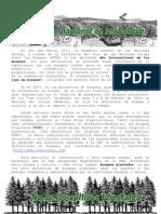 2011 documento