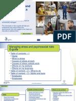 Psychosocial risks.pdf