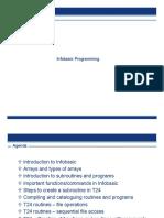 309828380-Infobasic-Programming.doc