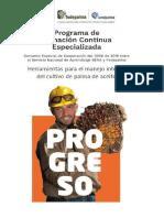 Principios fisiológicos en la producción de palma de aceite.