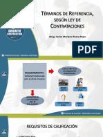 Presentación PPT - Términos de Referencia, según ley de Contrataciones
