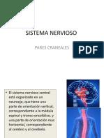 SISTEMA NERVIOSO (1) upaep.pptx