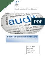 audit sect.pdf